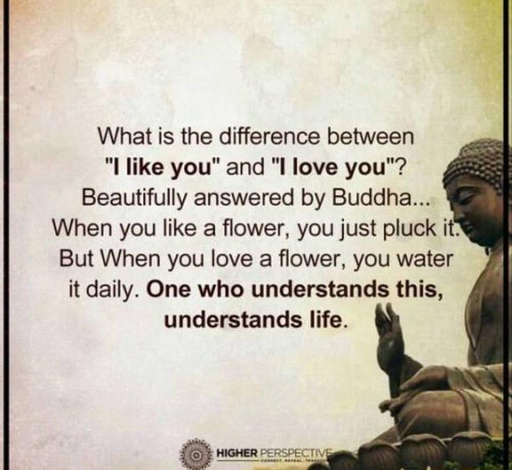 Zelfreflectie. Leuk of lief hebben?